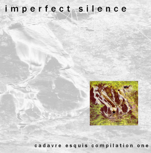 Imperfect Silence Cover